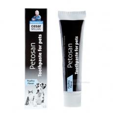 Hunde-Zahnpasta mit Geflügelgeschmack