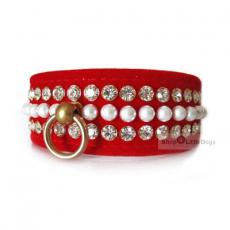 Hunde-Halsband & Leine Le Rouge rot, im Set