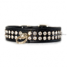 Hunde-Halsband Avance schwarz (Gr.L)