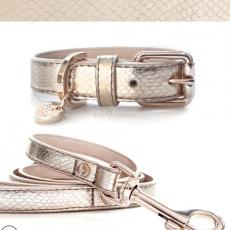 Hundehalsband PYTHON gold