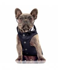 Hunde-Regenmantel MATELOT dunkelblau