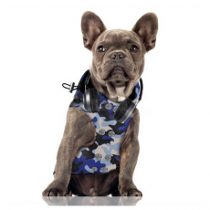 Hunde-Regenjacke TRICKS camouflage blau