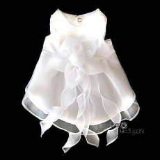 Hunde-Kleid Isabell reinweiß (Gr.XS)