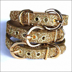 Hundehalsband Twinkle gold (Gr.XL)