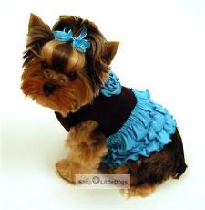 Hundekleid Salsa Girl schwarz-aqua (Gr.XS)
