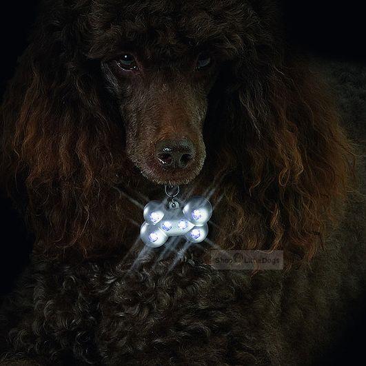 LED Sicherheitsblinker 'Bone'