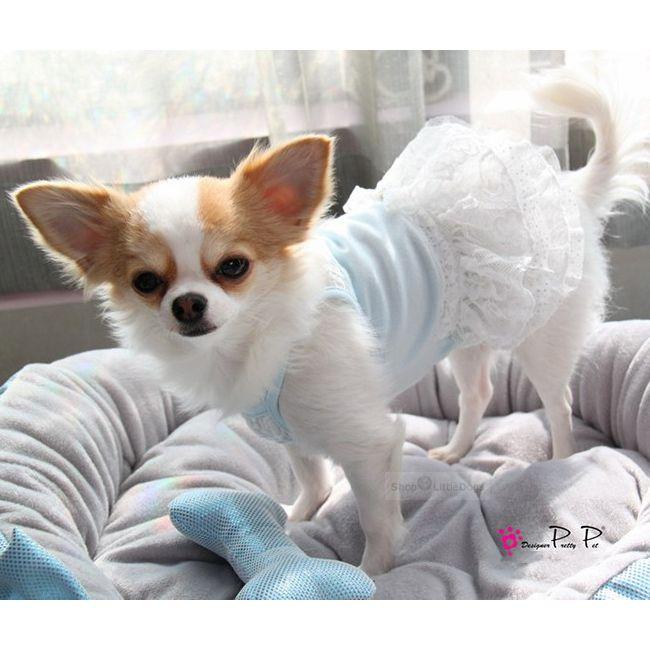 Hundekleid 'Lace' hellblau