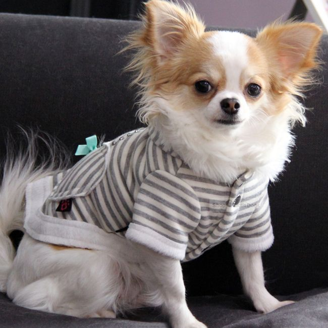 Hunde-Jacke 'Momy Love' grey (Gr.XS,M)