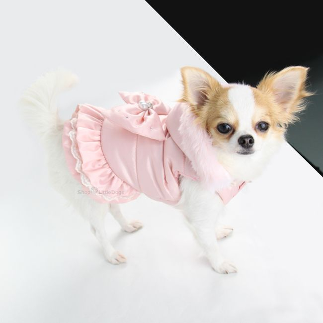Hundejacke 'Beauty' rosé