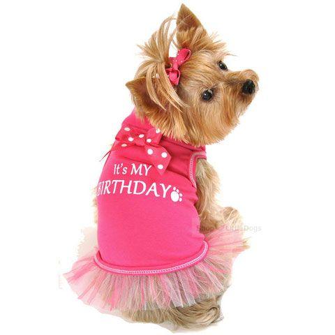 Hundekleid 'It's MY BIRTHDAY' pink