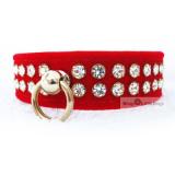 Hunde-Halsband & Leine Rubina rot, im Set