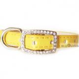 Hunde-Halsband Yummy gelb (Gr.XS)