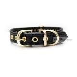 Hunde-Halsband 'Avance' schwarz (Gr.L)