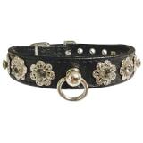 Halsband Starlight schwarz, im Set mit Leine