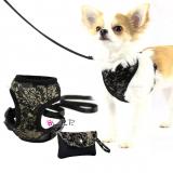 Hundegeschirr & Leine 'Chloe' schwarz-gold