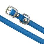 Hundehalsband Yummy blau