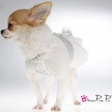 Hundekleid 'Lace' hellgrau