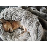 Cuddle Bed Platinum grau