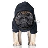 Hunde-Regenjacke 'PREPPY' navy