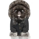 Hunde-Sweater COMET grey