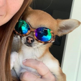 Hunde-Sonnenbrille 'Leo' braun