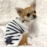 Hundepullover 'MATELOT'