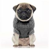 Hundepullover 'IRISH' grey
