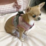 Hundegeschirr Sera rosa