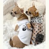 Hunde-Regenjacke 'LA DOLCE VITA' transparent