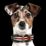 Hundehalsband 'HERITAGE'