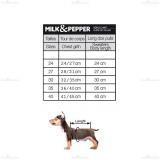 Hundepullover 'ROCK STAR' schwarz
