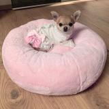 Hundebett DONUT rosé