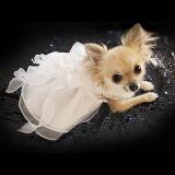 Hunde-Kleid 'Isabell' reinweiß (Gr.XS)