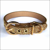 Hundehalsband 'Twinkle' gold (Gr.XL)