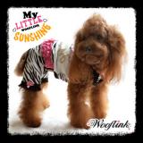 Hunde-Dress 'My Little Sunshine' (Gr.3,6)