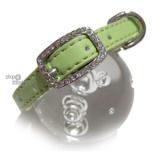 Hunde-Halsband Yummy green (Gr.M)